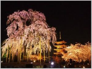 BeFunky_京都夜桜.jpg