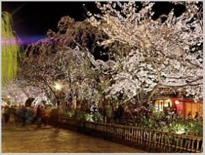 BeFunky_京都夜桜(祇園).jpg